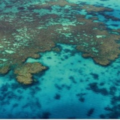 Aerial view coral gardens Great Barrier Reef Australia