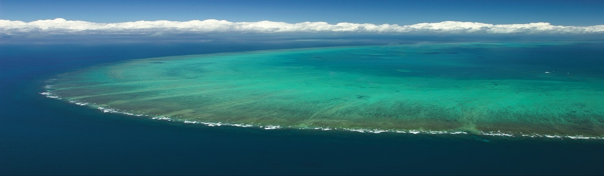 Aerial view of Arlington Reef on the Great Barrier Reef in Cairns