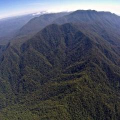 Aerial view of Bellenden Kerr on private charter flight from Cairns