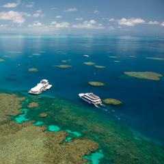 Aerial view of Boat and Pontoon on the Great Barrier Reef