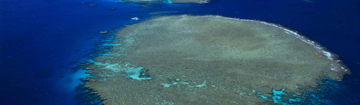 Aerial view of charter boat on the Great Barrier Reef in Australia