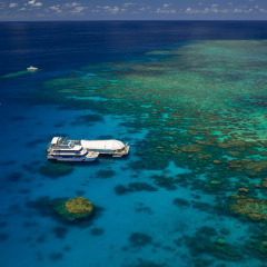 Aerial view of Great Barrier Reef tour boat and pontoon