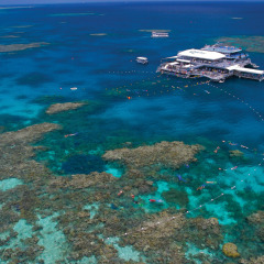 Aerial view of Great Barrier Reef tour pontoon off Port Douglas
