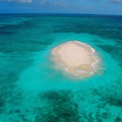 Aerial view of sand cay on the Great Barrier Reef