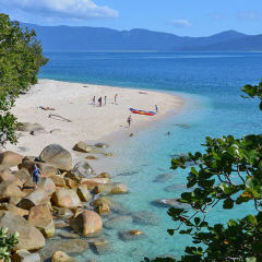 Aerial view of the beach on Fitzroy Island