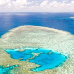 Aerial view of the coral formations on the Great Barrier Reef