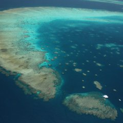 Aerial view of the Great Barrier Reef from a helicopter in Cairns