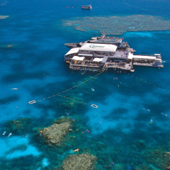 Aerial view of the Great Barrier Reef tour pontoon off Port Douglas