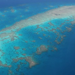 Aerial view of the Great Barrier Reef on the way to Cape York