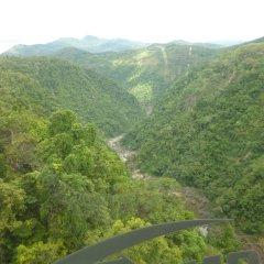Aerial view over the Kuranda ranges from the Skyrail Gondola