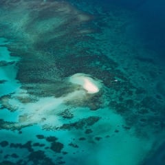 Aerial Views Of The Great Barrier Reef | Sand Cay | Great Value Scenic Flight Ex Cairns