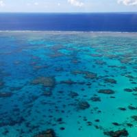 Aerial Views of the Great Barrier Reef Australia