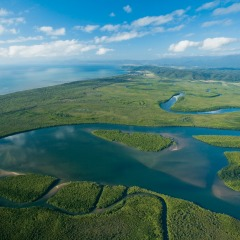 Aerial views over the Daintree & Cape Tribulation Rainforest region
