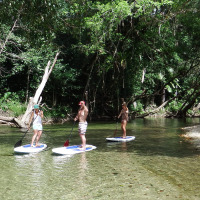 Afternoon Tour From Port Douglas | Stand Up Paddle Boarding (SUP)