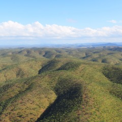 Amazing Views of the Far North Bush