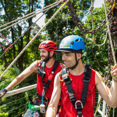 Amazing Views of the Rainforest - Daintree Cape Tribulation Ziplining Tour