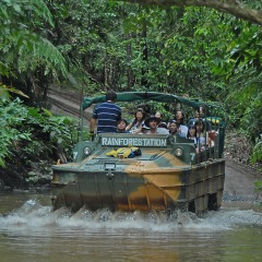 Amphibious Army Duck Vehicle | At Rainforestation | Full Day Kuranda Day Tour Departs Cairns North Queensland
