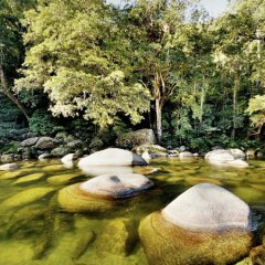 Ancient river boulders at Mossman Gorge North Queensland