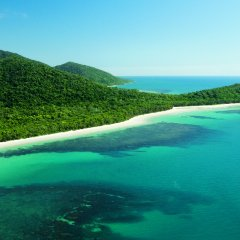 Ariel view Cape Tribulation