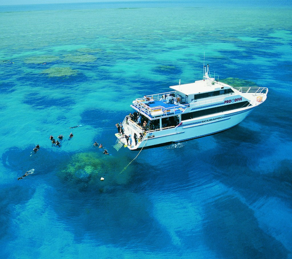 Cairns best dive trips 3 day 2 night liveaboard - Pro dive cairns ...