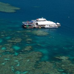 Ariel view Reef Magic platform cairns