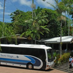 Half Day Rainforestation Nature Park - Return Cairns Accommodation Transfers By Coach