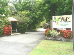 At the Mango Tree Holiday Apartments Port Douglas