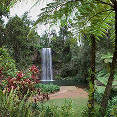 Atherton Tablelands And Outback Tours