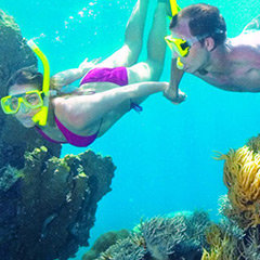 Cairns Beach Tours & Attractions