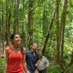 Award Winning Aboriginal Tour | Day Tour | Tropical North Queensland