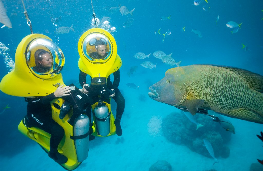Palm cove great barrier reef tours - Best place to dive the great barrier reef ...