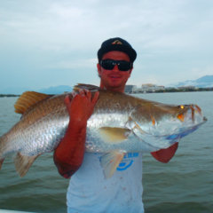 Barramundi Fishing Cairns | Shared Or Private Charter | Up To 8 Anglers