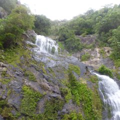 Waterfall Views from Kuranda Train