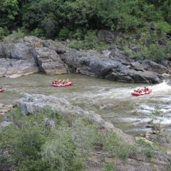 Barron River Rafting Half Day Activity