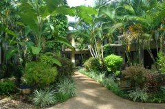 Bay Village Tropical Gardens Resort and apartments