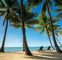 Beachfront Luxury Palm Cove Resort | Palm Cove Accommodation