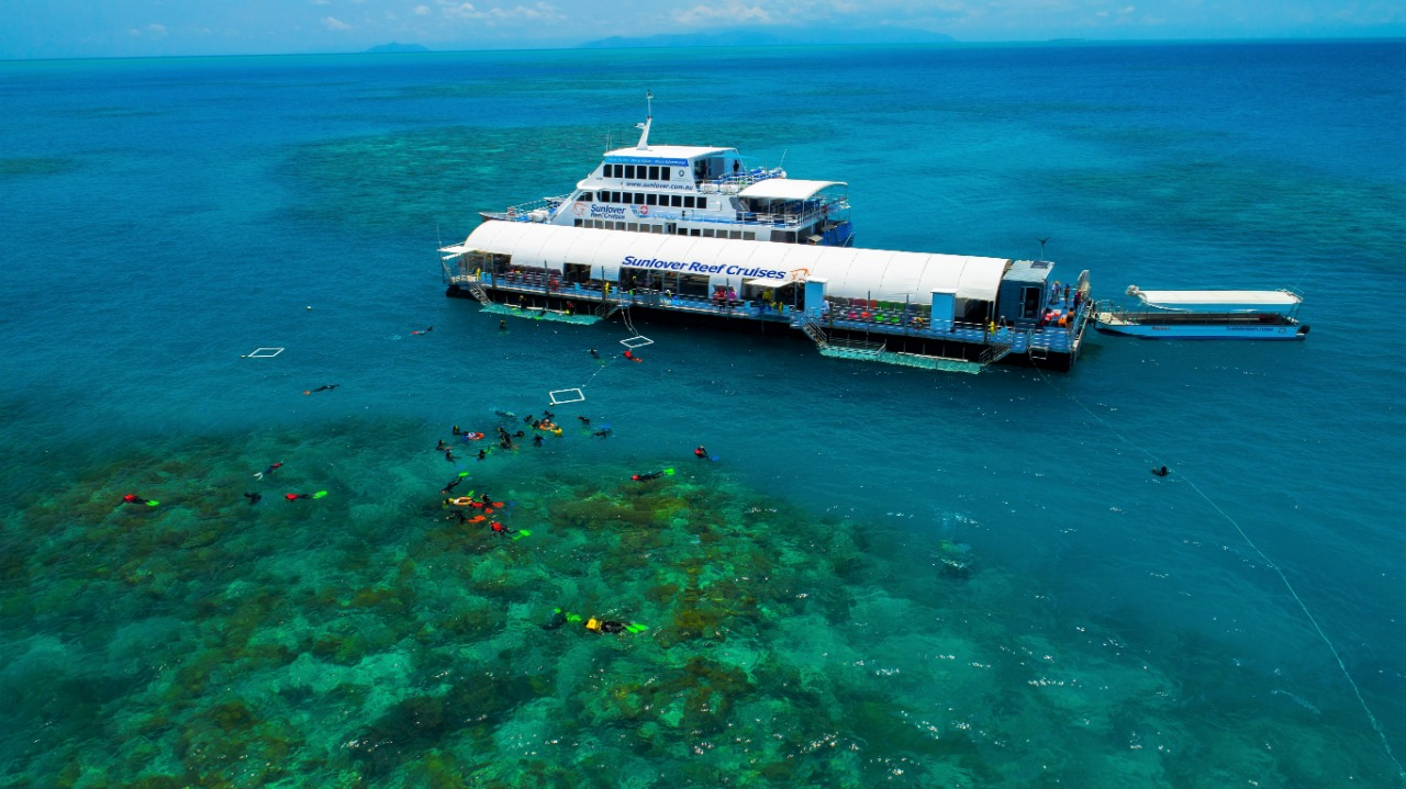 Cairns Best Value Reef Trip - 3 5 Hours Outer Great Barrier