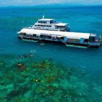 Best value Great Barrier Reef tour from Cairns