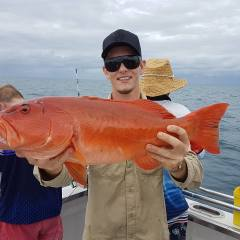 Big Coral Trout Cairns Fishing Charter