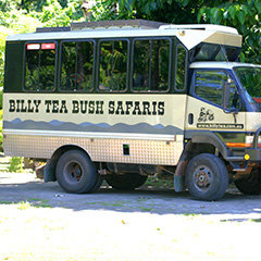 Billy Tea Port Douglas Cape Tribulation Daintree Tour