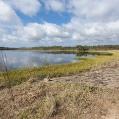 Cairns Bird Watching Tour | 5,000 Acres of Lagoons