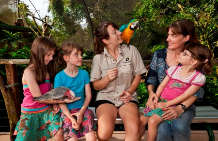 Birdworld Kuranda