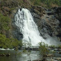 Bloomfield Falls | 1 Day Private Tour From Port Douglas In Tropical North Queensland | Small & Personalised Tour