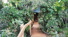 Boardwalk to your romantic treehouse at Mt Quincan Crater Retreat