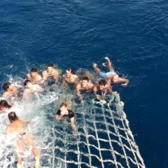 Boom Netting On The Great Barrier Reef