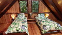 Bower House 2nd Bedroom - Rainforest Treehouse Cairns' Nature Getaway