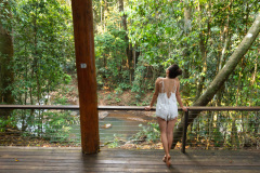 Rainforest Treehouses each with  Large Balconies - Rainforest Treehouse Cairns' Nature Getaway