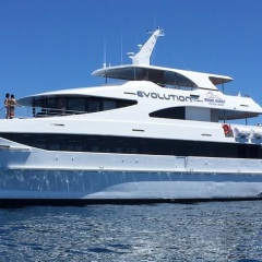 Brand New Boat | Full Or Half Day Reef Trip To The Great Barrier Reef From Cairns In Tropical North Queensland