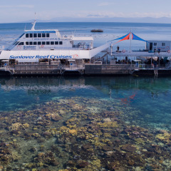 Great Barrier Reef Tour | Brand New Reef Pontoon