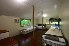 Budget Dorm Share Accommodation - Ferntree Daintree Rainforest Lodge Accommodation